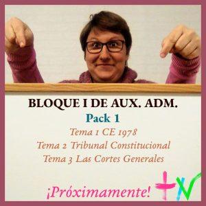 Aux ADM Bloque I Pack 1